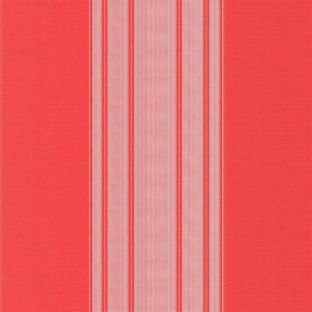 Stripe-Red-Vertex-Blind