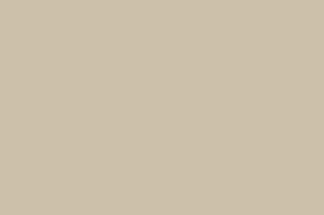 Taupe Gray